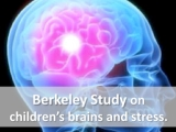 New: Berkeley study on how stress changes the brain…