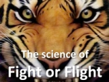 """Oh God, I'm shaking, I feel sick!"" (the physiology of fight or flight / panic attacks)"