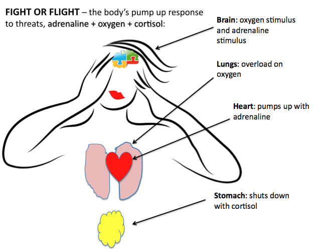 """Oh God, I'm shaking, I feel sick!"" (the physiology of fight or flight / panic attacks) (4/6)"
